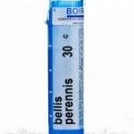 RX_bellis_perennis_pills